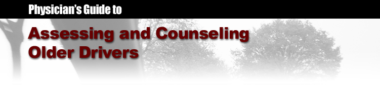 Physician's Guide to Assessing and Counseling Older ...
